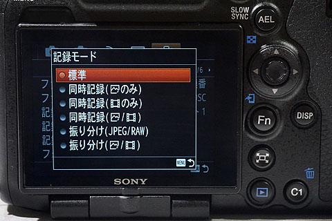 ILCA-99M2- (13).jpg