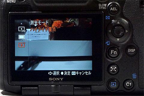 ILCA-99M2- (21).jpg