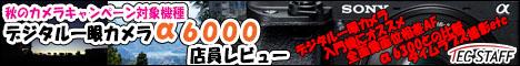 6000review.jpg
