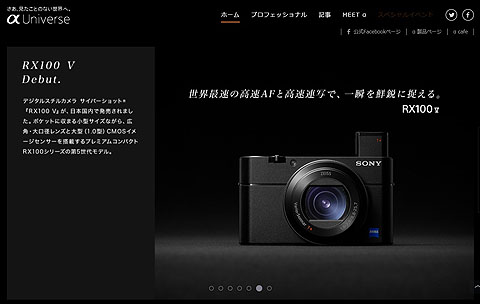 DSC-RX100M5 (2).jpg
