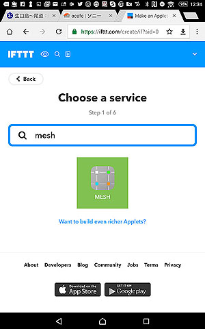 MESH-06.jpg